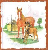 Zobrazit detail - Decor papír - Kůń a hříbě  17 x 45 cm.