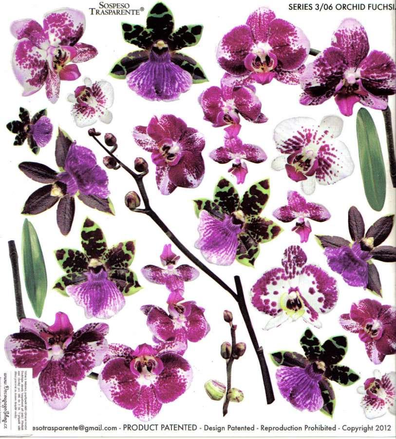 Sospeso fólie Orchidej