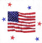 Zobrazit detail - Ubrousek 33 x 33 cm USA