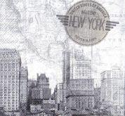 Zobrazit detail - Ubrousky 33 x 33 cm NEW YORK