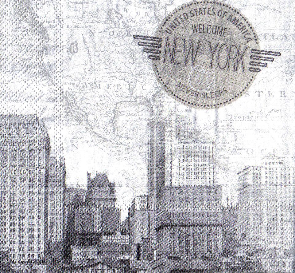 Ubrousky 33 x 33 cm NEW YORK