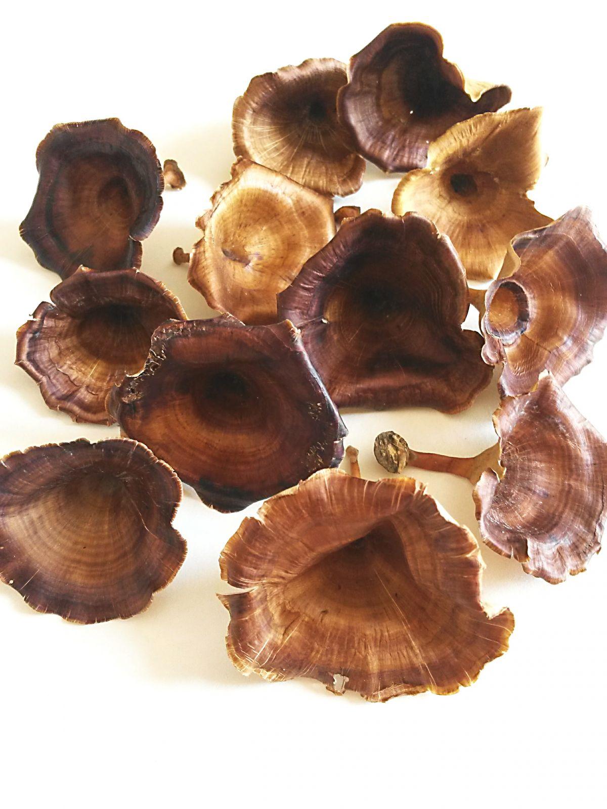 Dekorace přírodní Golden mushroom 3-5cm - 5 ks