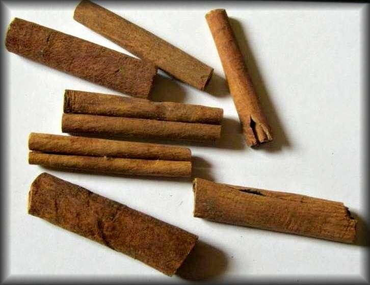 Dekorace: Skořice přírodní -