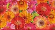 Zobrazit detail - Ubrousky 33 x 33 cm GERBERY