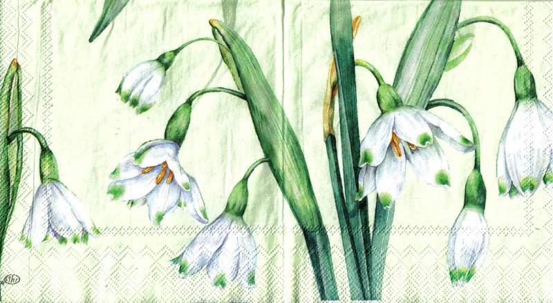 Ubrousek 33 x 33 cm Květy