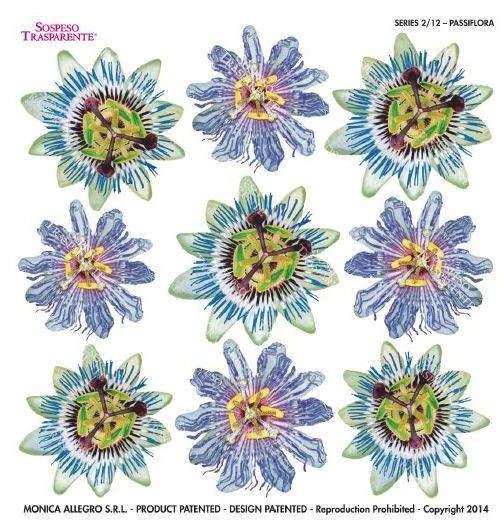 Sospeso fólie Passiflora