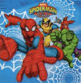 Ubrousek 33 x 33 cm SPIDER-MAN
