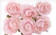 Květinové ozdoby, růžičky