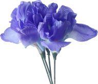 Dekorace květ Iris 1ks (9cm květ + stonek)