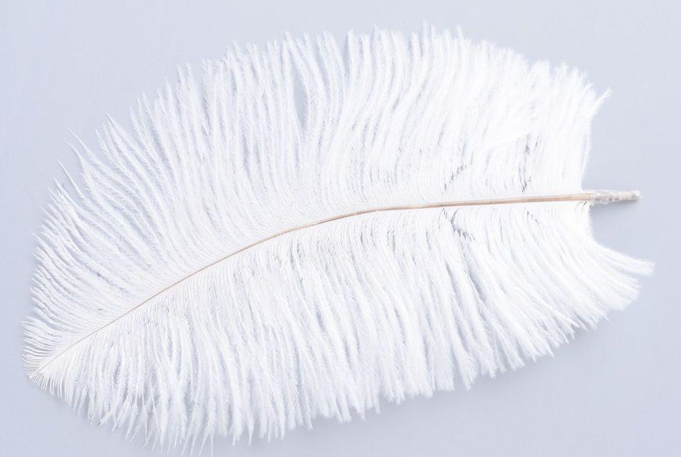 Peří PŠTROSÍ 15 až 25cm - 1ks