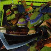 Ubrousek 33x33 cm TURTLES